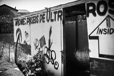Local Baja graffiti.