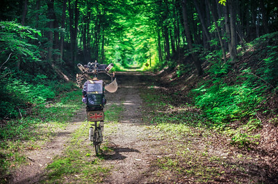 The wonderful Michigan rail trails. I have spent four days on them, mostly tarmac, but this stretch was gravel and grass.