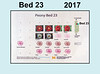 2017 new bed map for Bed 23