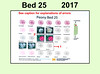 2017 new bed map for Bed 25
