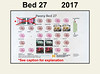 2017 new bed map for Bed 27