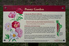 Sign:  Peony Garden description (2011 version)