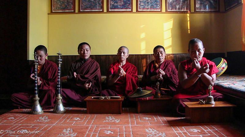 Mahayana nuns- Nepal