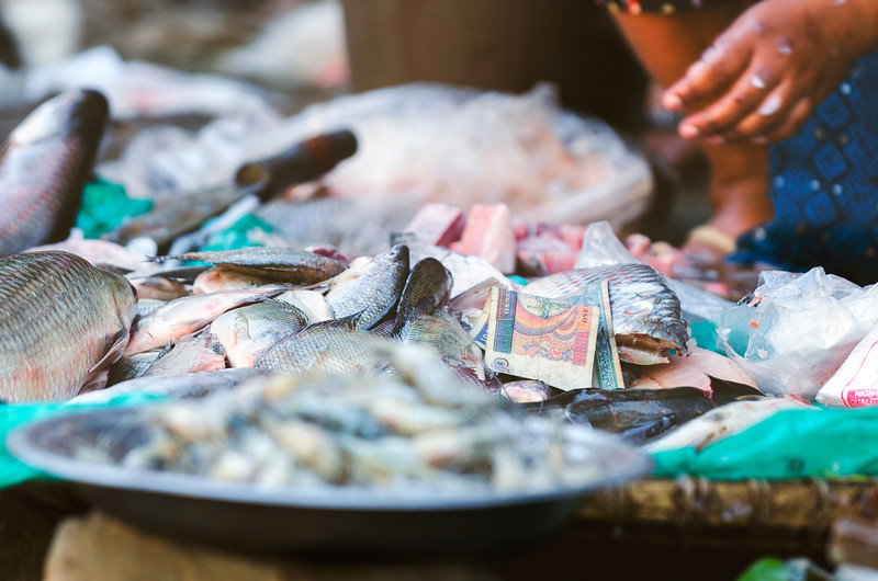 Throw some Kyats on the fish