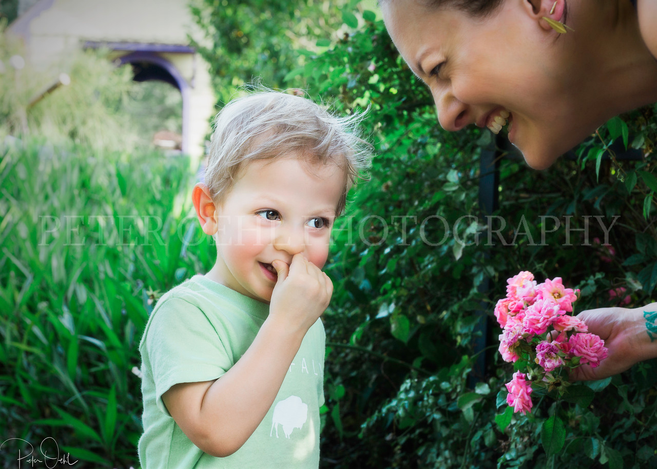 flowers tickling the nose