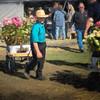 Amish Mud Sale 5