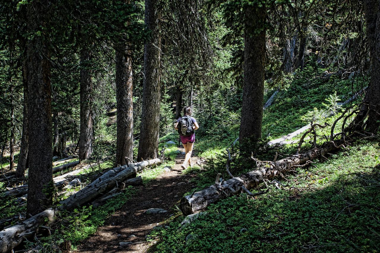 Descending from Niwot Ridge, Indian Peaks Wilderness, Western Boulder Country