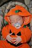 UBOC Halloween 12 (Large)