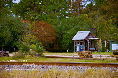 DSC_2050 magnolia town little shed train tracks fall color 2009 1