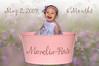 IMG_3658 pink bucket