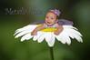 IMG_3781 flower copy