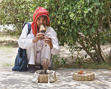 Snake charmer in Delhi midday.  The poor Cobra wouldn't dance any higher in the intense heat.