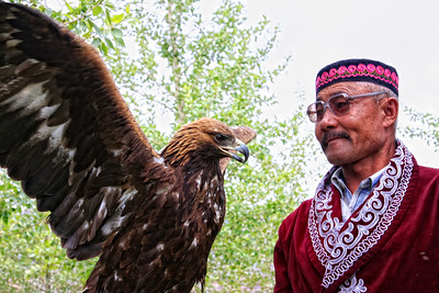 Golden Eagle and trainer in Ulgii, far NW Mongolia