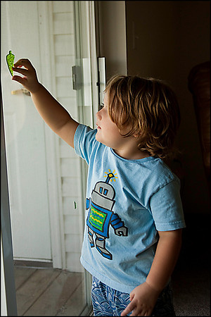 Trace kept throwing the green tree over his shoulder and giggling when it hit the window.