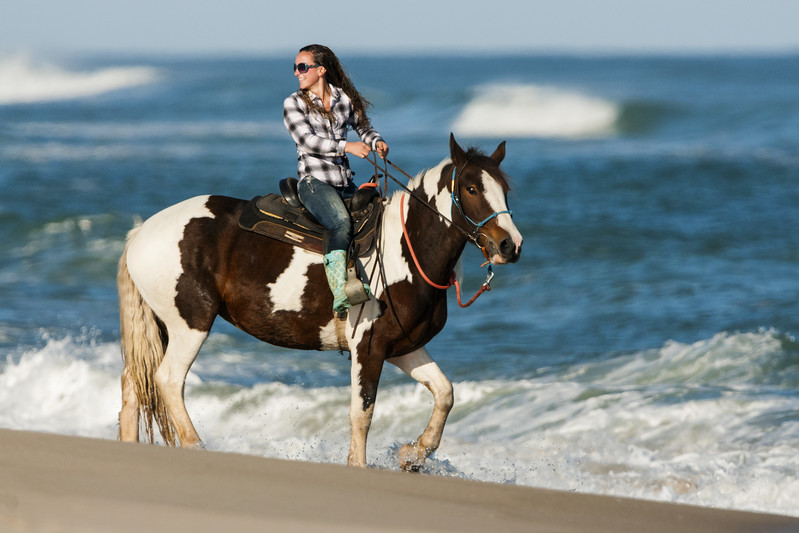 A Girl Training Her Horse In the Assateague Island Surf