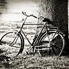 bicycle-lgr-bw