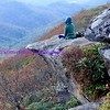 Craggy Pinnacle, Blue Ridge Mountains (5817' above sea level)
