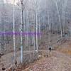winter in appalachia