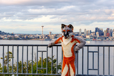 Furries In Seattle