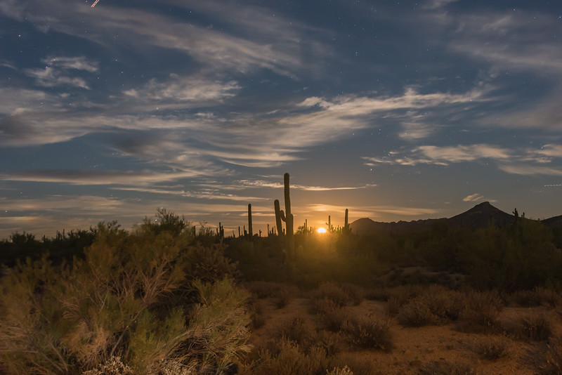 DesertMoonRise-9666.jpg