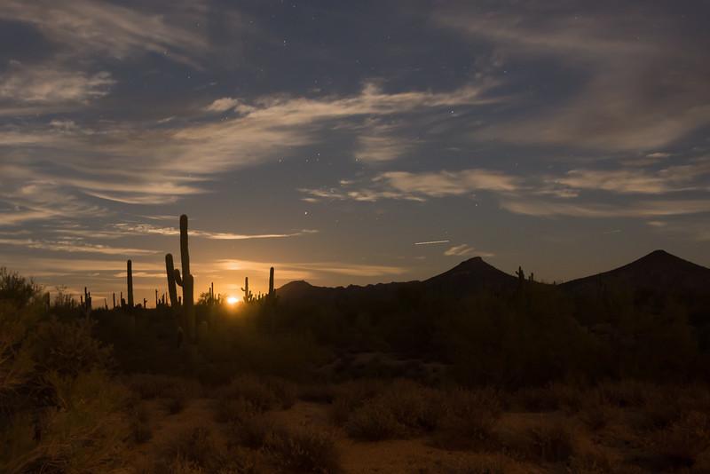 DesertMoonRise-9664.jpg