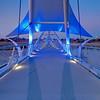 Twilight Bridge fusion