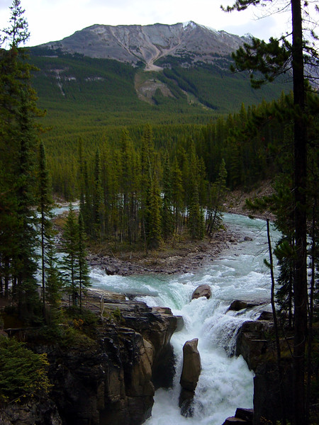 More Sunwapta Falls