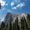 Yosemite2016-5753.jpg