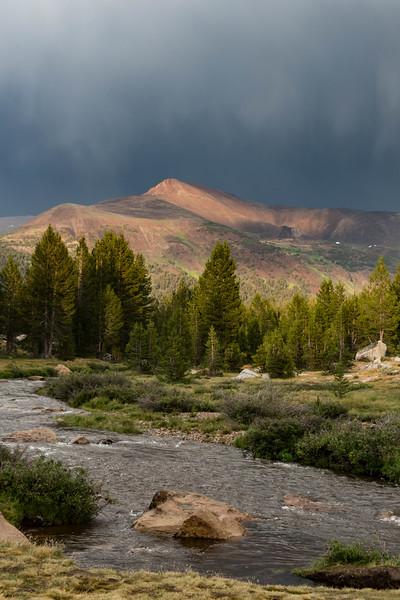 Yosemite2016-6019.jpg