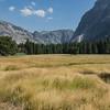 Yosemite2016-5779.jpg