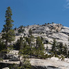 Yosemite2016-5445.jpg