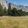 Yosemite2016-5811.jpg