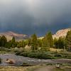 Yosemite2016-6009.jpg