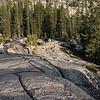Yosemite2016-5954.jpg