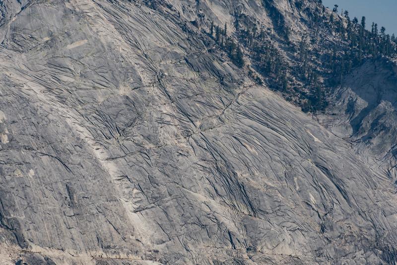 Yosemite2016-5936.jpg