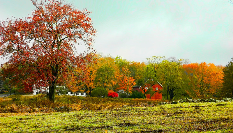 new england fall scene