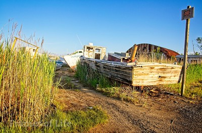 Boat Graveyard on Tangier Island