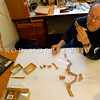DSC_ 0241 Prof R. Ewan Fordyce examines the fossil bones of Platydyptes, an Oligocene penguin, in his rooms in the Geology Department, Otago University