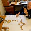 DSC_ 0241 Prof R. Ewan Fordyce examines the fossil bones of Platydyptes, an Oligocene penguin, in his rooms in the Geology Department, Otago University