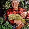 11001-70814  Kakapo (Strigops habroptilus) the late Don Merton with 'Waynebo' in the forest on Pearl Island. Waynebo fathered at least eleven kakapo chicks before he died in January 2012 *