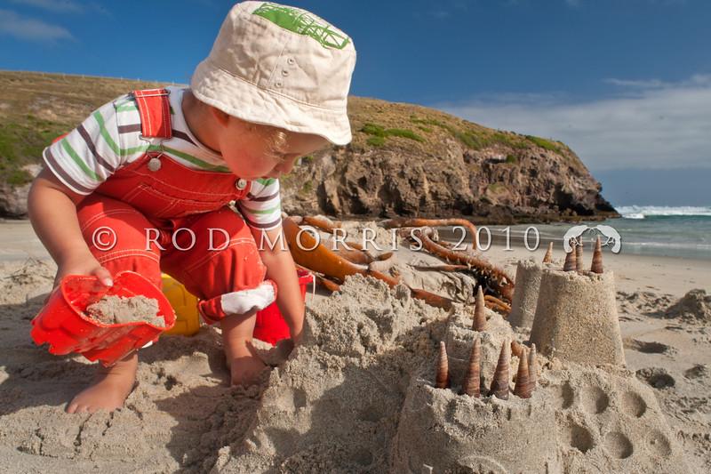 DSC_0867 Large turret snails, or korire  (Maoricolpus roseus) shells used as 'turrets' decorating a sand castle. Smaills Beach, Otago Peninsula *