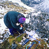 11000-52202 Takahe (Porphyrio hochstetteri) a field researcher unpacks radio-tracking gear to locate breeding pairs in early summer