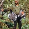 11001-85021 Sooty shearwater (Puffinus griseus) 'muttonbirds' gathered by birder Marty McColgan. Big South Cape Island *