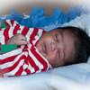 277 - Baby Treys