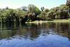 2014 Silver Springs, Florida (10)