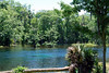 2014 Silver Springs, Florida (20)