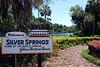 2014 Silver Springs, Florida (8)