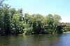 2014 Silver Springs, Florida (14)