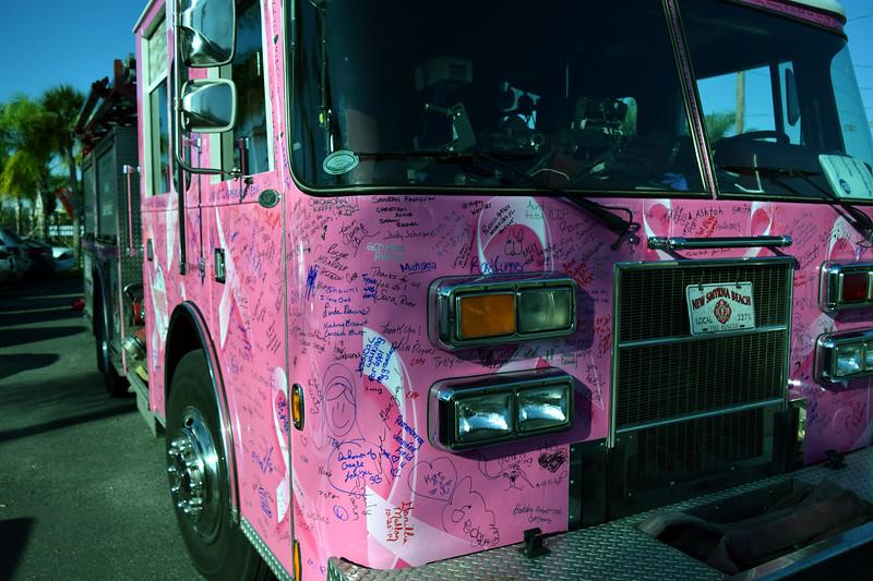 2014 Making Strides Against Breast Cancer in Daytona Beach (208)