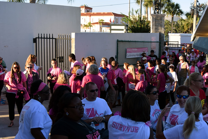 2014 Making Strides Against Breast Cancer in Daytona Beach (13)